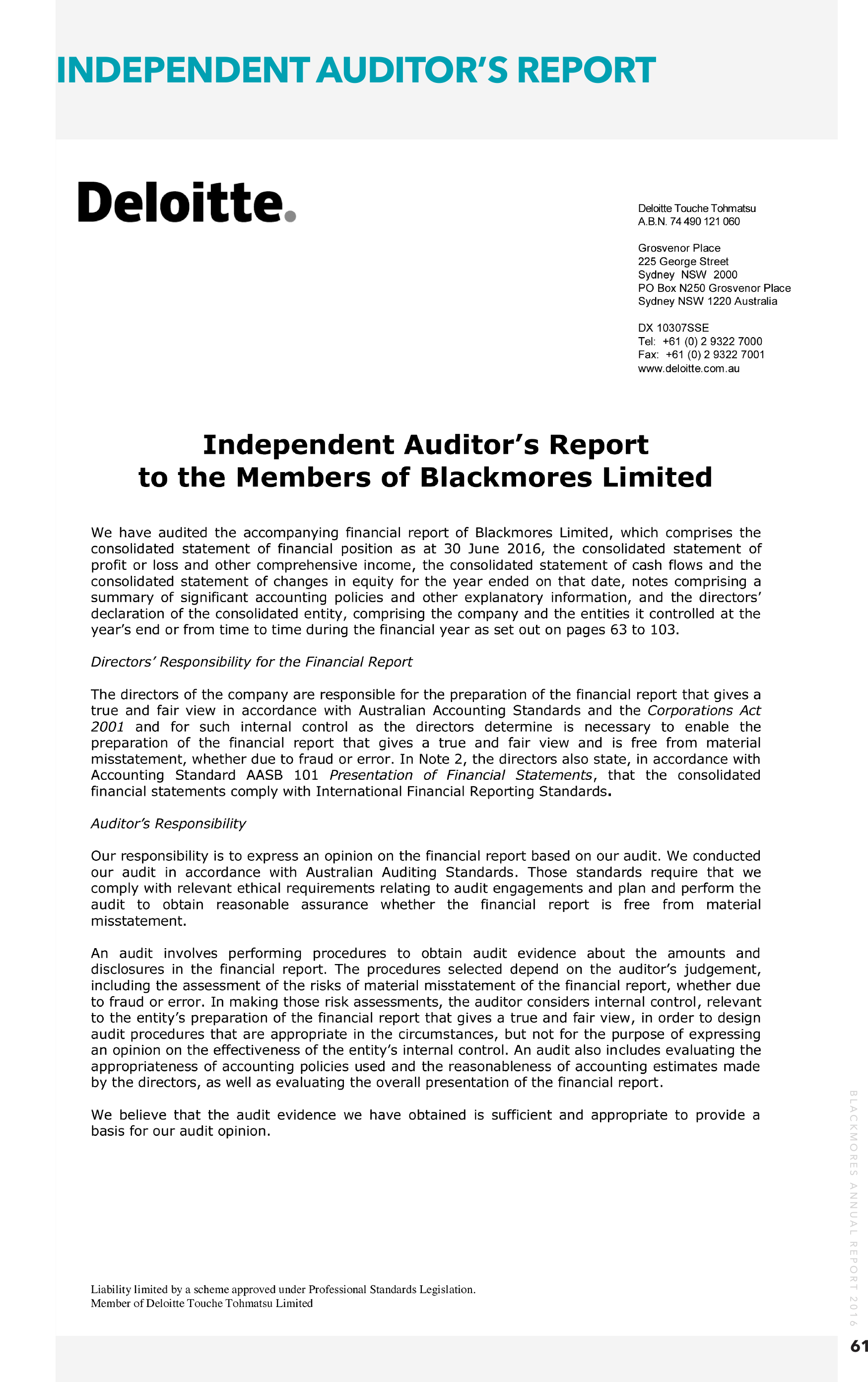 independent auditor u2019s report